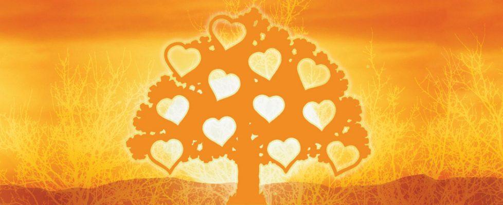 bonheur arbre lumiere