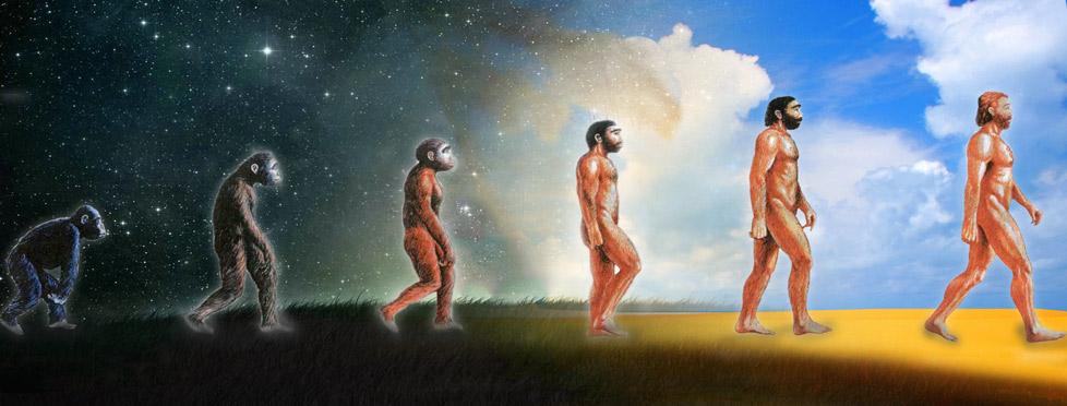 evolution homme creation