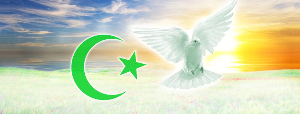 Apropos de l'islamisme