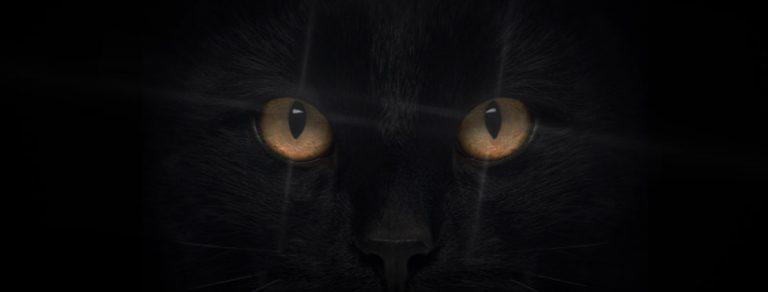 A propos de la superstition