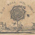 Rose-Croix et Histoire